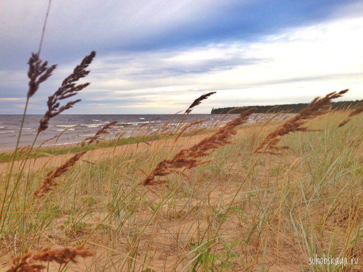 Ладожское озеро | Блог Давай Замедлимся
